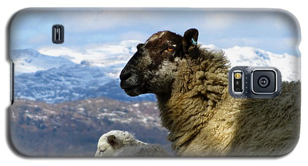 Galaxy S5 Case featuring the photograph Mother And Lamb by RKAB Works