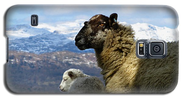 Mother And Lamb Galaxy S5 Case