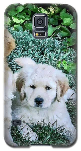 Mother And Pup Galaxy S5 Case