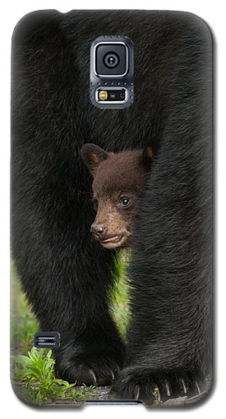 Mother's Shelter Galaxy S5 Case