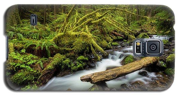 Mount Hood Creek Galaxy S5 Case