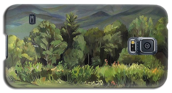 Galaxy S5 Case featuring the painting Mount Lafayette From Sugar Hill New Hampshire by Nancy Griswold