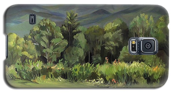 Mount Lafayette From Sugar Hill New Hampshire Galaxy S5 Case by Nancy Griswold