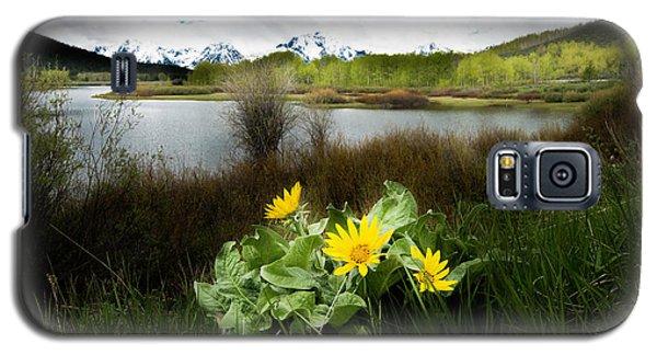 Mount Moran Spring Galaxy S5 Case