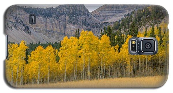 Mount Timpanogos Meadow In Fall Galaxy S5 Case
