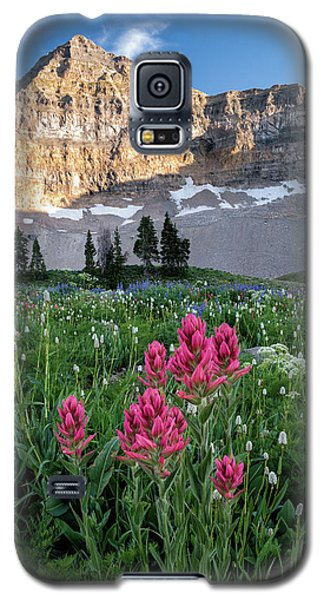 Mount Timpanogos Wildflowers Galaxy S5 Case