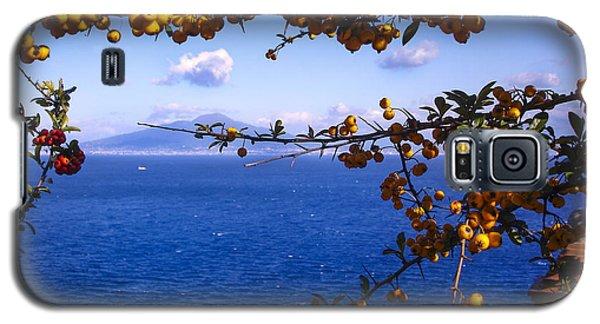 Mount Vesuvius From Sorrento Galaxy S5 Case