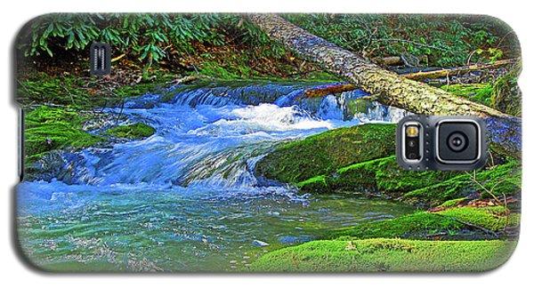 Mountain Appalachian Stream Galaxy S5 Case