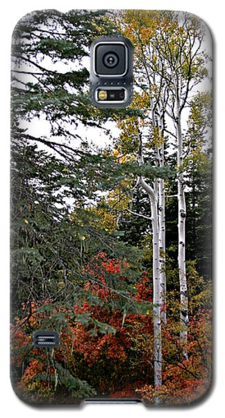 Mountain Autumn Galaxy S5 Case
