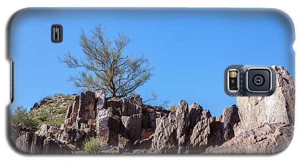 Galaxy S5 Case featuring the photograph Mountain Bush by Ed Cilley