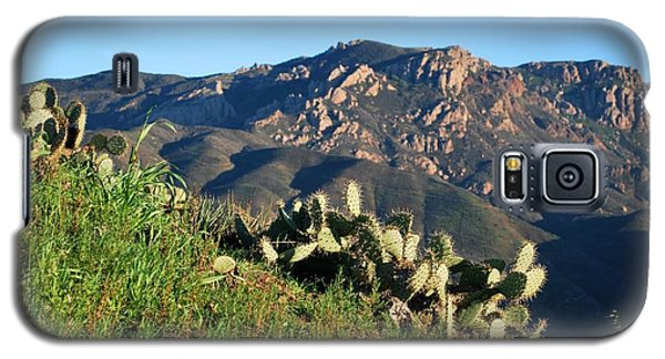 Mountain Cactus View - Santa Monica Mountains Galaxy S5 Case