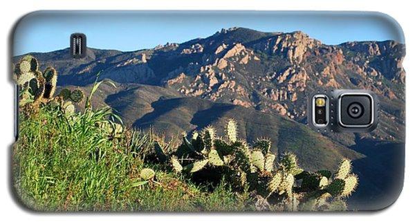 Mountain Cactus View - Santa Monica Mountains Galaxy S5 Case