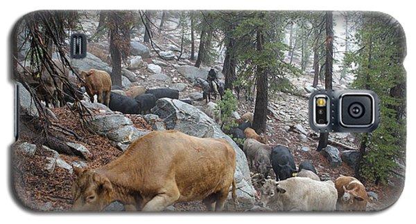 Mountain Climbing Galaxy S5 Case