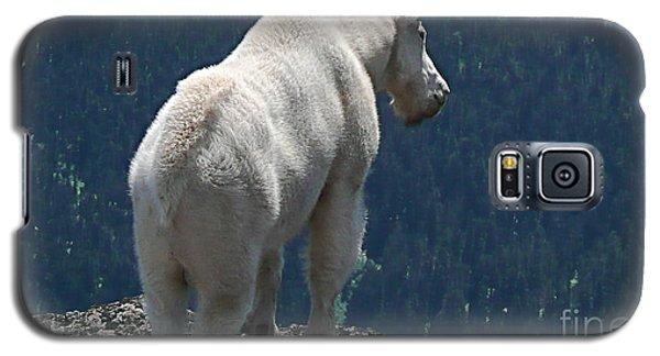 Galaxy S5 Case featuring the photograph Mountain Goat 2 by Sean Griffin