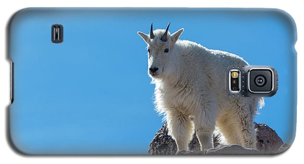 Galaxy S5 Case featuring the photograph Mountain Goat 4 by Gary Lengyel