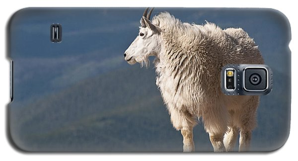 Galaxy S5 Case featuring the photograph Mountain Goat by Gary Lengyel