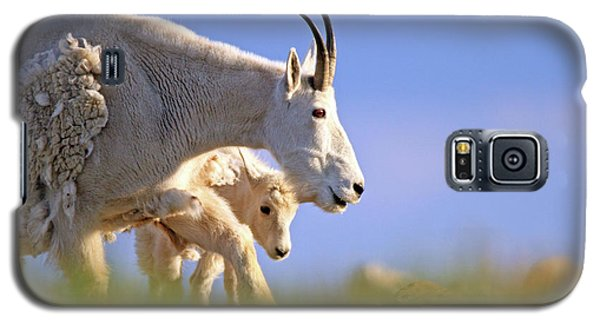 Galaxy S5 Case featuring the photograph Mountain Goat Light by Scott Mahon
