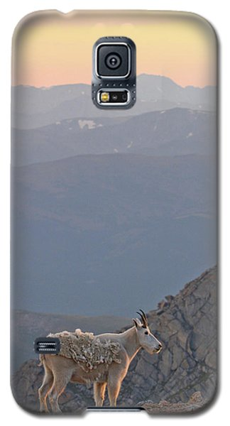Galaxy S5 Case featuring the photograph Mountain Goat Sunset by Scott Mahon