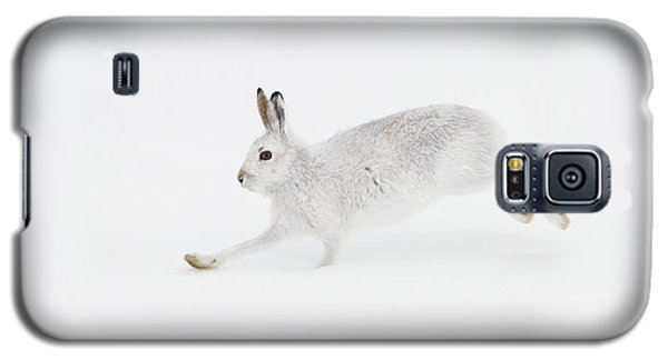 Mountain Hare Running Galaxy S5 Case