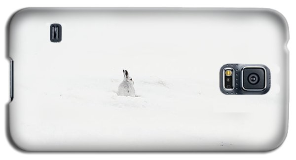 Mountain Hare Small In Frame Left Galaxy S5 Case