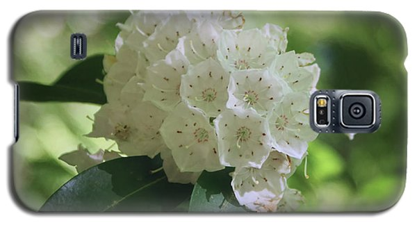 Galaxy S5 Case featuring the photograph Mountain Laurel - Spring by Nikolyn McDonald