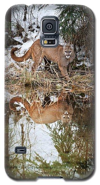 Mountain Lion Reflection Galaxy S5 Case