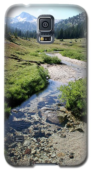 Mountain Meadow And Stream Galaxy S5 Case