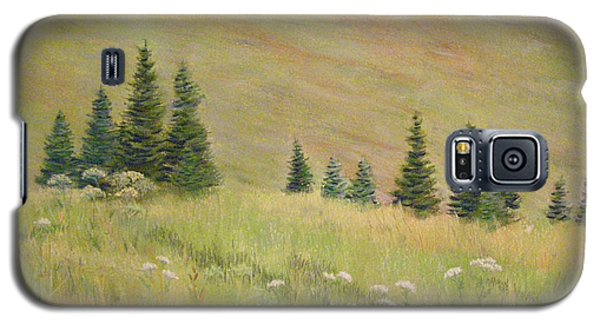 Mountain Meadow Galaxy S5 Case