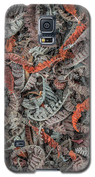 Galaxy S5 Case featuring the photograph Mountain Misery Leaf Litter by Alexander Kunz