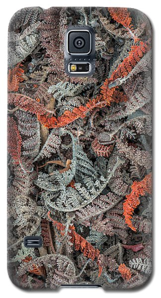 Mountain Misery Leaf Litter Galaxy S5 Case