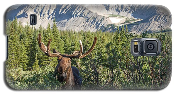 Mountain Moose Galaxy S5 Case