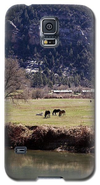 Galaxy S5 Case featuring the photograph Mountain Pasture Vertical by Lorraine Devon Wilke