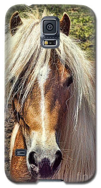 Mountain Pony Galaxy S5 Case by Laurinda Bowling