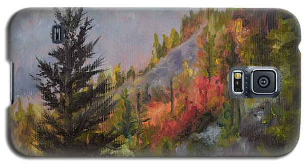 Mountain Slope Fall Galaxy S5 Case