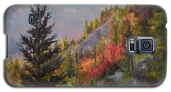 Mountain Slope Fall Galaxy S5 Case