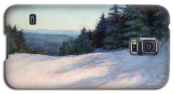 Galaxy S5 Case featuring the painting Mountain Stillness by Vikki Bouffard