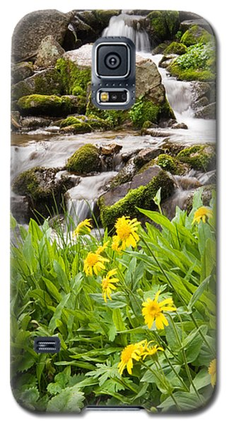 Mountain Waterfall And Wildflowers Galaxy S5 Case