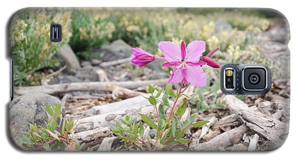 Mountain Wild Flowers Galaxy S5 Case