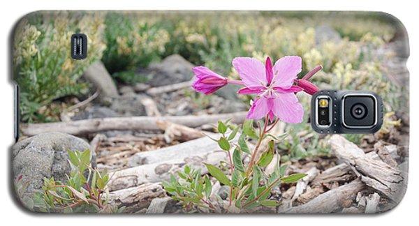 Mountain Wild Flowers Galaxy S5 Case