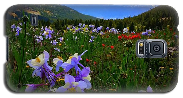 Galaxy S5 Case featuring the photograph Mountain Wildflowers by Karen Shackles