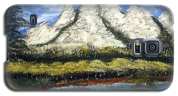 Mountains And Evergreens Galaxy S5 Case