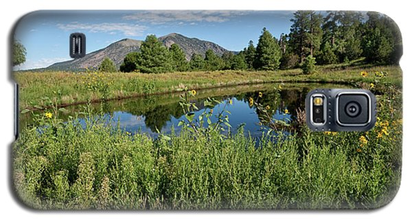 Mountains Reflected In A Pond Galaxy S5 Case