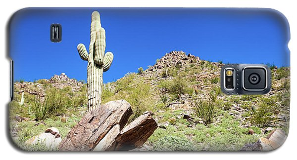 Galaxy S5 Case featuring the photograph Mountainside Cactus 2 by Ed Cilley