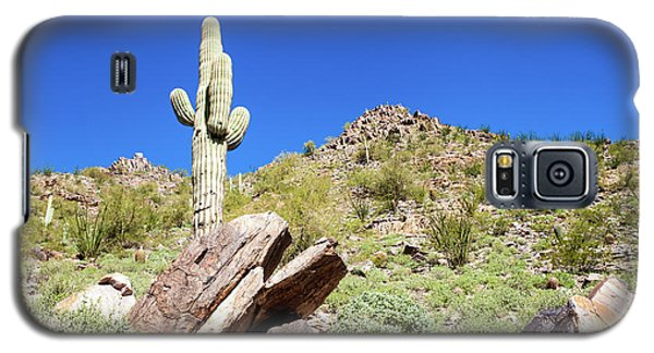 Mountainside Cactus 2 Galaxy S5 Case by Ed Cilley