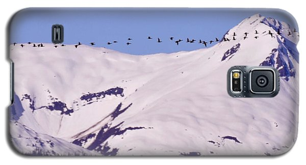 Mountaintop Geese II Galaxy S5 Case