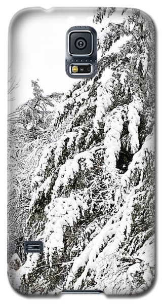 Mourn The Winter Galaxy S5 Case