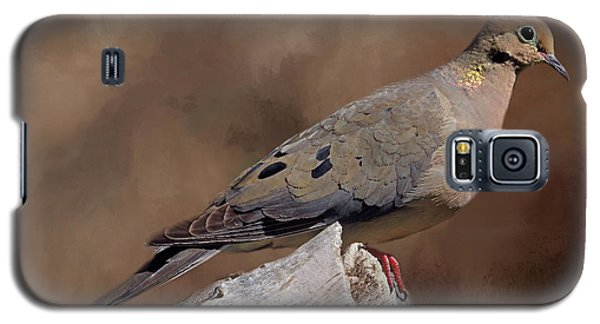 Galaxy S5 Case featuring the photograph Mourning Dove by Donna Kennedy