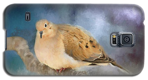 Galaxy S5 Case featuring the photograph Mourning Dove Of Winter by Darren Fisher
