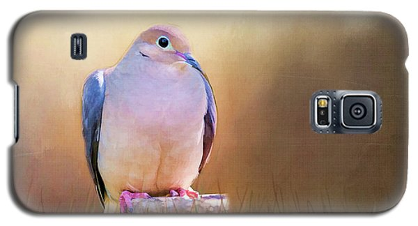 Mourning Dove Painted Portrait Galaxy S5 Case