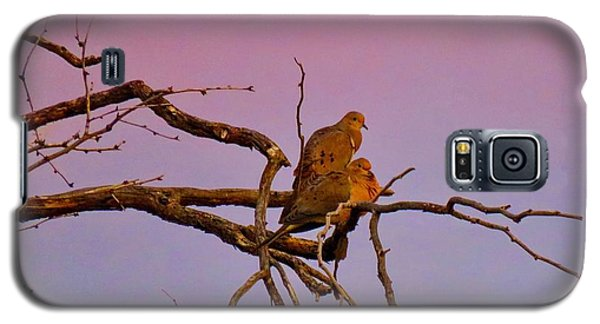 Mourning Doves Galaxy S5 Case